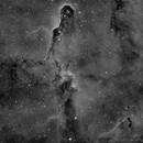 Elephant's Trunk Nebula,                                DeepSkyView
