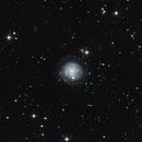 NGC 3344,                                Garrett Hubing