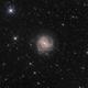 M83 - The Southern Pinwheel Galaxy,                                Gabriel R. Santos...