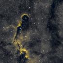 IC 1396 Elephant's Trunk nebula,                                Phil Montgomery