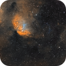 Tulip Nebula - SHO,                                Phil Brewer