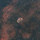 Crescent Nebula,                                Logan