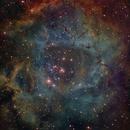 Rosette Nebula,                                Eric Solís
