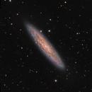 NGC 253. Sculptor Galaxy,                                Santiago Rodríguez Hernández