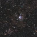 VdB 146, NGC 7129 and 2MFGC 16419,                                Andreas Zeinert
