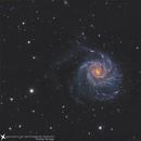 M101 LRGB+HA,                                Andres Noriega