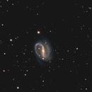 NGC 7479,                                Peter Goodhew