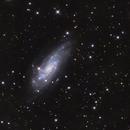 NGC4559,                                Kaori Iwakata