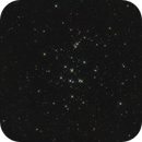 M44 - The Beehive Cluster,                                Benny Colyn