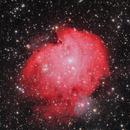 NGC2175,                                yibo