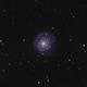 NGC3938 & supernova 2017ein,                                AstroGG