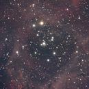 NGC2237,                                NeilBuc
