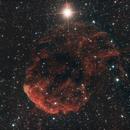 IC443 - Jellyfish Nebula,                                Dan Watt