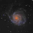 """M101 2xTSRC8"""" Carbon,                                Juergen"""