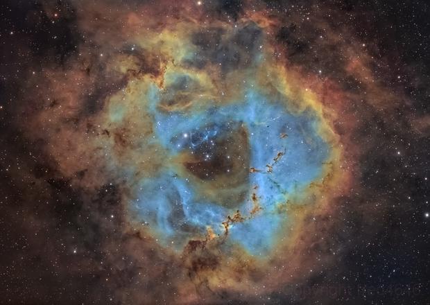 Nebuleuse de la rosette Caldwell 49 SHO,                                LAMAGAT Frederic
