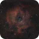 C50 / NGC 2244 - Rosette nebula,                                Tom914