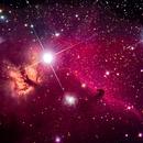 Horsehead and Flame Nebulae in New LIght,                                Steve Lantz