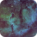 IC1396 Nebula Elephant's Trunk,                                Enrico Benatti