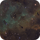 IC1396 Bok globules,                                Irving Pieters