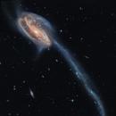 Arp 188 - Tadpole Galaxy, Hubble Space Telescope,                                Rudy Pohl