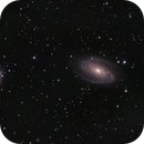 M81 - M82 Bode's and Cigar Galaxy,                                Matthew Abey