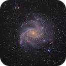 NGC 6946: The Fireworks Galaxy,                                rhedden