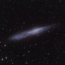 NGC 55,                                SCObservatory