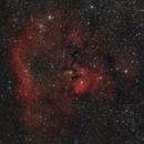 NGC 7822,                                Bill