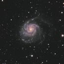 M101,                                Jason Lichter