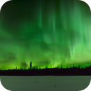 Aurora Timelapse and Nightscape in the Yukon Canada,                                Dean Carr