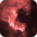 NGC7000 - North American Nebula,                                NuclearRoy