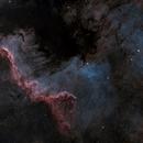 Cygnus Wall,                                Brian Maurer