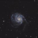 M101_LRGB,                                Robert Shepherd
