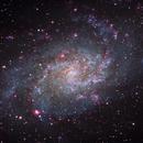 Triangulum Galaxy (M33),                                Tim Jardine