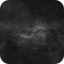 Propeller Nebula in Cygnus (Ha),                                Jon Rista