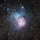 Trifid Nebula,                                bugeater