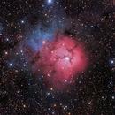 Trifid Nebula Mosaic,                                rhedden