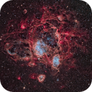 NGC 1760 (N11), 1761, 1769, and more (RGBHO),                                Alex Woronow