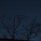 Moon with Earthshine, Venus and Star Hamal,                                Garry O'Brien