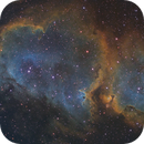 IC 1848 with 80mm,                                Ron Crouch