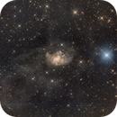 NGC 1313,                                Scotty Bishop