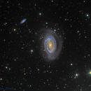 NGC 4725 @DSW,                                Miles Zhou