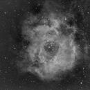 NGC2237 - The Rosetta Nebula,                                Michel FLEUREAU