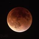 Eclipse de Luna,                                Miquel
