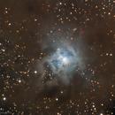 NGC 7023 - Iris Nebula,                                GalaxyMike
