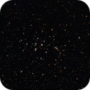 The Beehive Cluster - M44,                                Jared Holloway