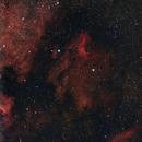 Pelican Nebula,                                David Augros