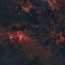 NGC 3576 Freiheitsstatue,                                Gabriele Gegenbauer