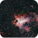 M17 Swan nebula with Halfa,                                Fernando