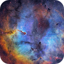 Elephant Trunk Nebula in SHO,                                William S Kennedy